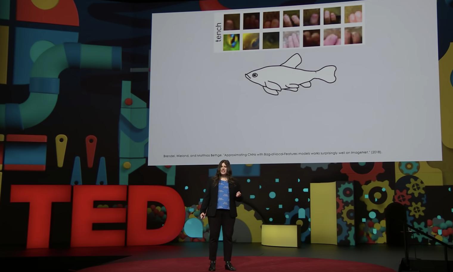 screenshot of The Danger of AI is Weirder Than You Think TEDTalk